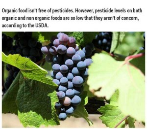 35 Science Facts That Are Actually Wrong (35 photos) 15