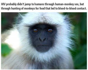35 Science Facts That Are Actually Wrong (35 photos) 23