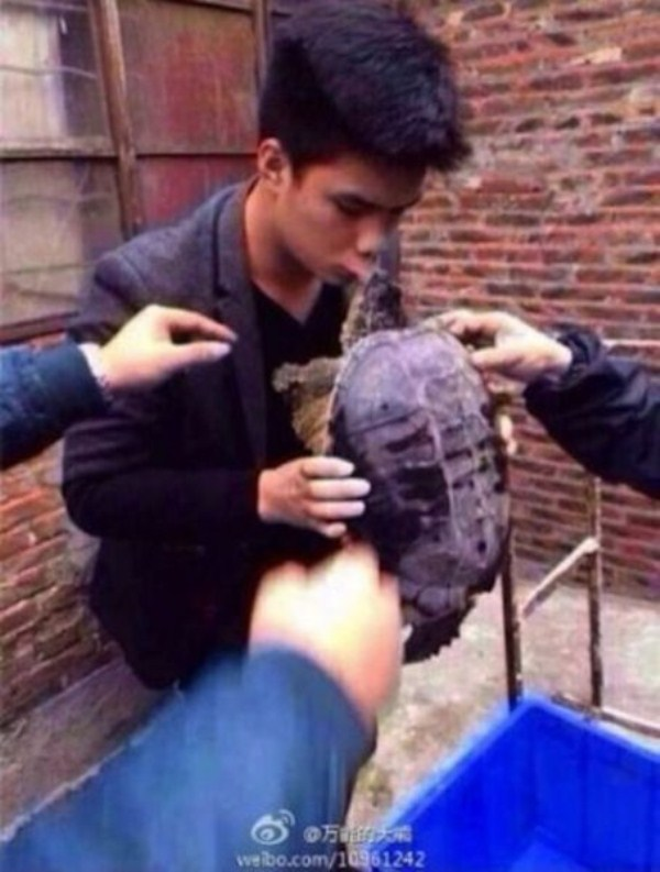 i_would_advise_you_never_to_kiss_a_snapping_turtle_640_03