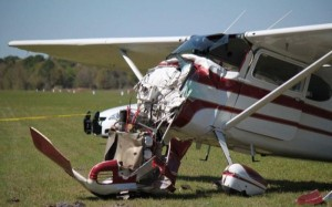 Skydiver Gets Hit by a Plane (15 photos) 15