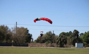 Skydiver Gets Hit by a Plane (15 photos) 2