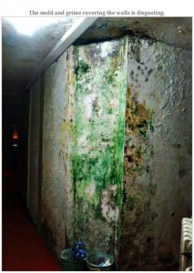 Most Disgusting Student Dormitory in the World (33 photos) 6