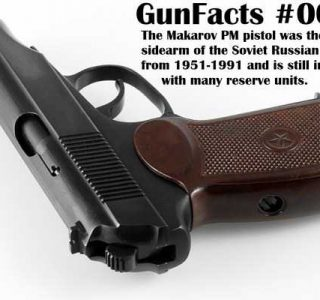 20 Interesting Gun Facts (20 photos)