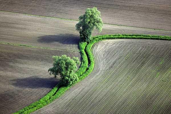 Aerial-Photos (31)