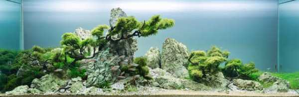 best-aquarium-underwater-decoration-ideas (103)