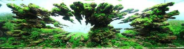 best-aquarium-underwater-decoration-ideas (4)