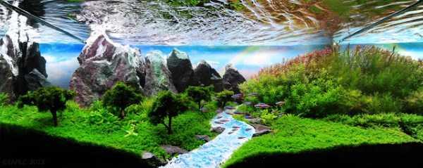 best-aquarium-underwater-decoration-ideas (51)
