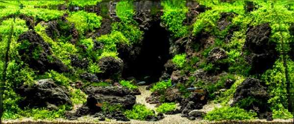 best-aquarium-underwater-decoration-ideas (52)