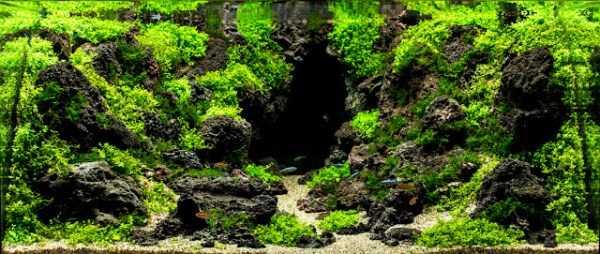 best-aquarium-underwater-decoration-ideas (52)
