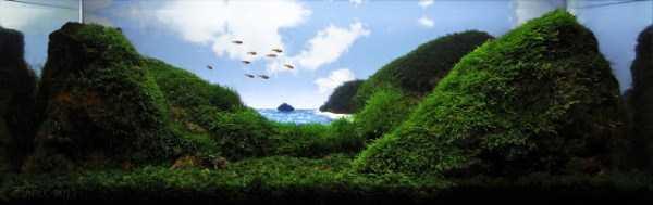 best-aquarium-underwater-decoration-ideas (85)