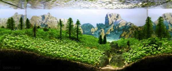 best-aquarium-underwater-decoration-ideas (89)