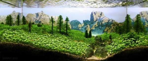 best-aquarium-underwater-decoration-ideas (89)