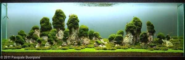 cool-aquarium-decorations (15)