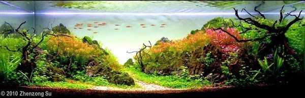 cool-aquarium-decorations (16)