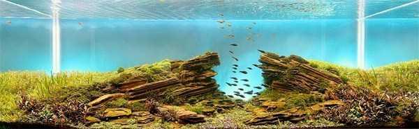 cool-aquarium-decorations (3)
