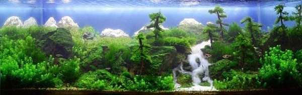 cool-aquarium-decorations (7)