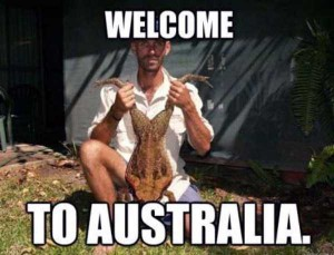 Totally Crazy Things Seen in Australia (30 photos) 1