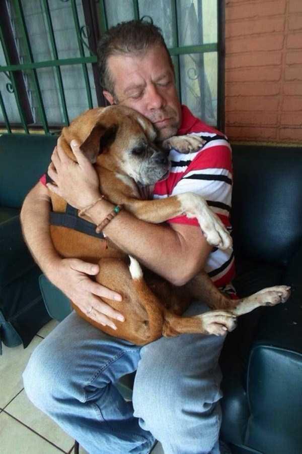 doge-love (15)