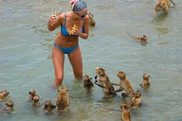 funny-beach-pics (13)