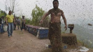 Chinese Beekeper Covers Himself With 460,000 Bees (12 photos) 11