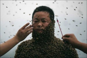 Chinese Beekeper Covers Himself With 460,000 Bees (12 photos) 5
