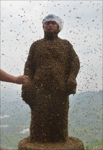 Chinese Beekeper Covers Himself With 460,000 Bees (12 photos) 6