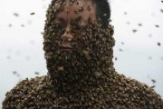 man-covered-with-bees (8)