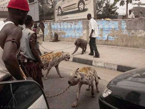 only_in_africa_13_1