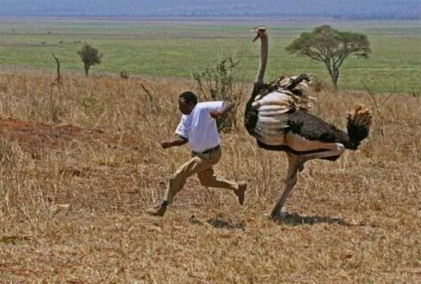 only_in_africa_16_1