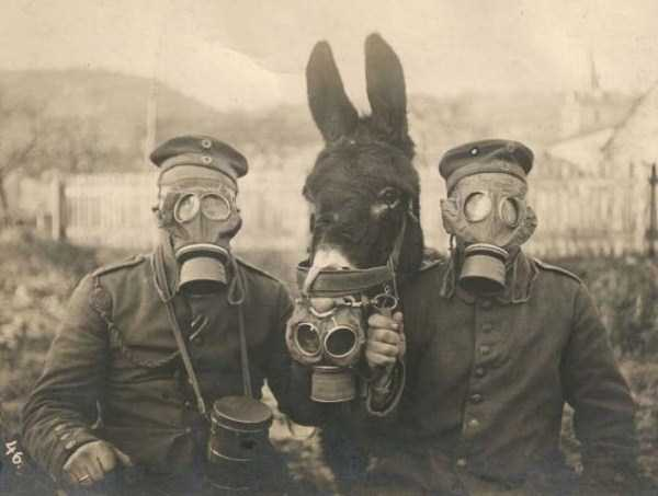 rare_historical_images_10_1