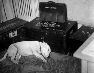 Extremely Rare Historical Photos (40 photos) 32