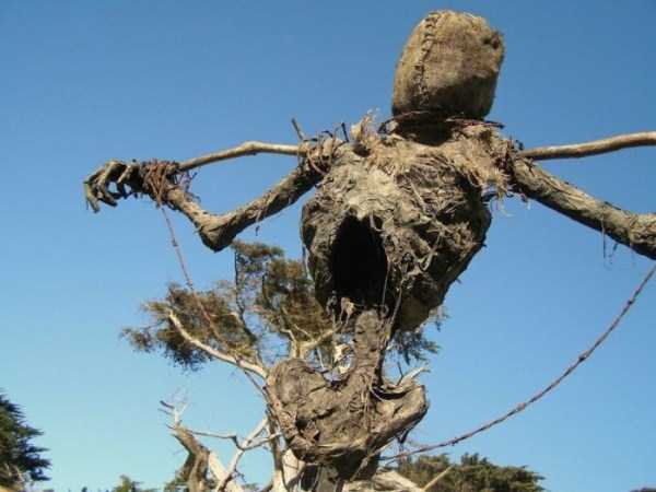 Creepy Scarecrow In The Middle Of The Field (5 photos) 2