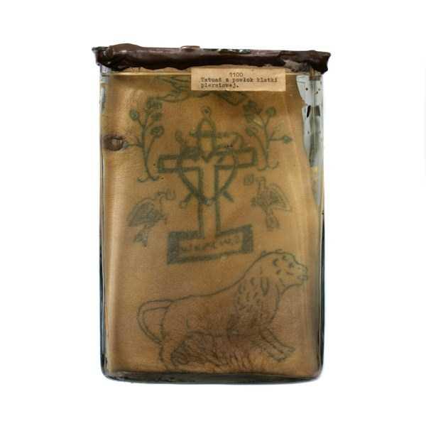 tattoos-preserved-in-Formaldehyde (2)