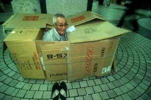 Living in a Box (21 photos) 2