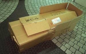 Living in a Box (21 photos) 3