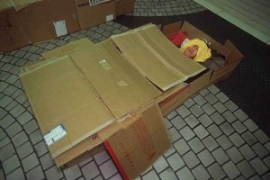 Living in a Box (21 photos) 5