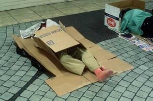 Living in a Box (21 photos) 9