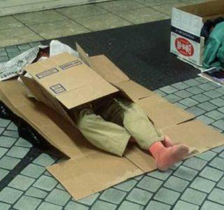 Living in a Box (21 photos)
