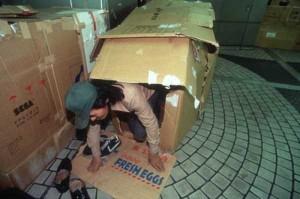 Living in a Box (21 photos) 10