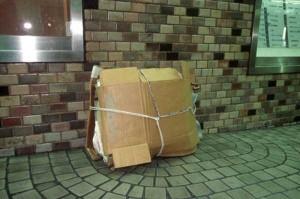 Living in a Box (21 photos) 13