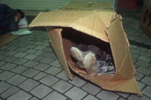 Living in a Box (21 photos) 15