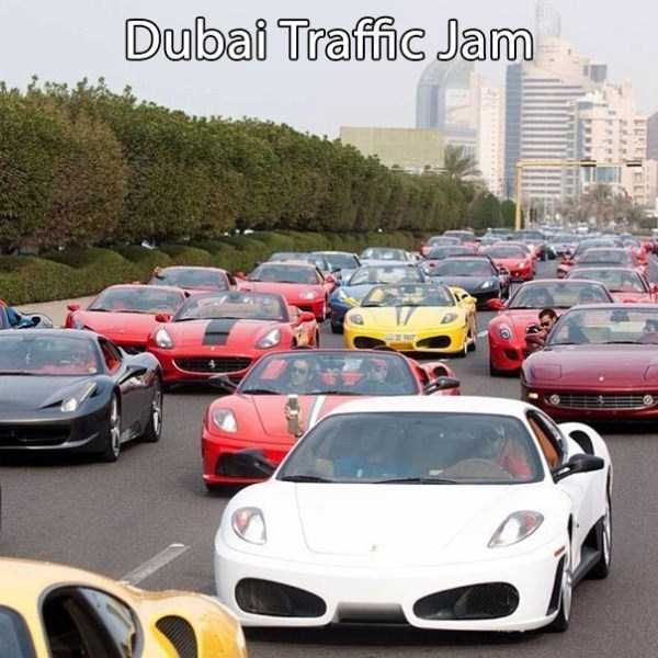 Only-in-Dubai (16)