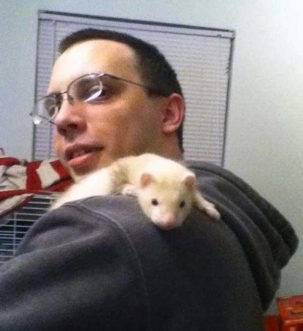 albino-animals (57)