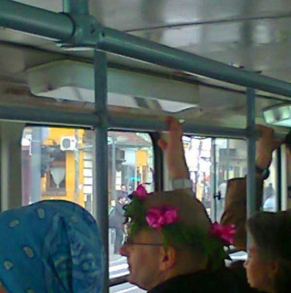 commuting_in_belgrade_is_a_real_experience (9)