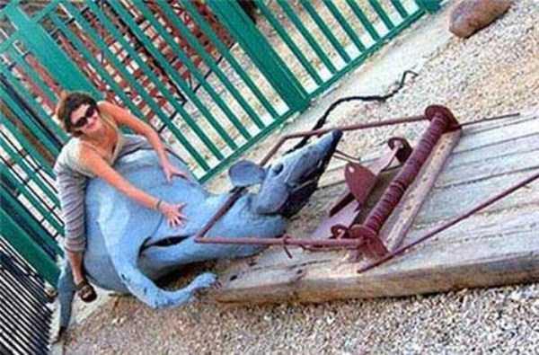 creepy-playgrounds (24)