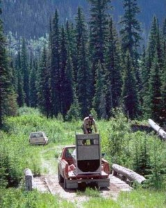 Forest Ranger Attacked by Grizzly Bear (9 photos) 1