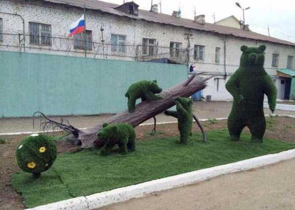 meanwhile-in-russia (13)