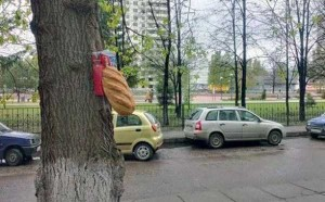 In a Distant Land Called Russia (40 photos) 25