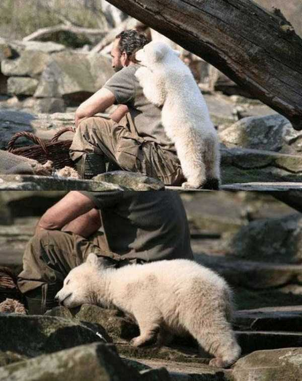 pictures_are_worth_much_more_than_words (40)