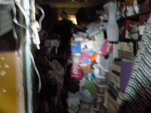 Abandoned House Turned Into Massive Garbage Dump (23 photos) 2